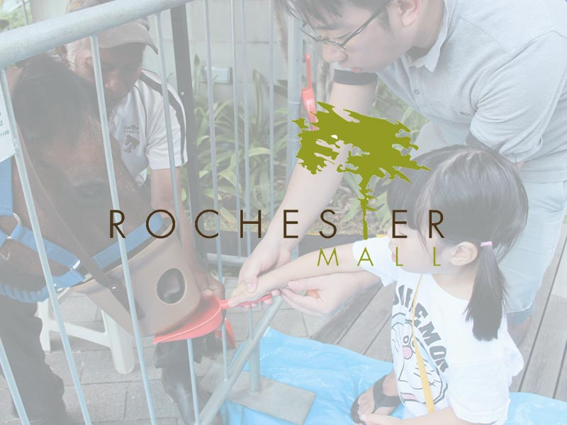 Rochester-mall1